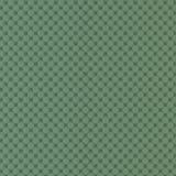 Grote groene muurcapito Royalty-vrije Stock Foto's