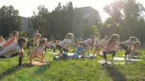 Grote groep die volwassenen en jonge geitjes een yogaklasse buiten in park bijwonen stock videobeelden
