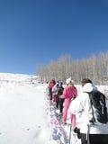 Grote groep sneeuwschoenwandelaars stock fotografie