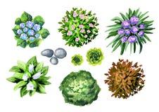 Grote hand getrokken geplaatste tuininstallaties Elementen van landschapsontwerp Stock Fotografie