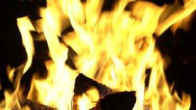 Grote hete heldere vlam stock video