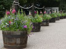Grote houten die planters met binnen bloemen, worden gebruikt om een kabelomheining, in Engeland te maken royalty-vrije stock afbeeldingen