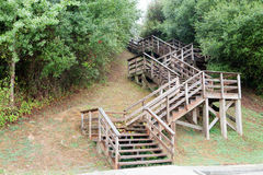 Grote houten trap Stock Foto's
