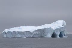 Grote ijsberg met verscheidene holen Stock Foto