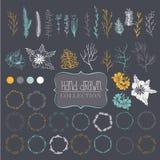 Grote inzameling van elementen voor decoratie Vector Illustratie