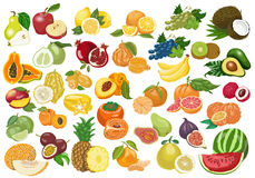 Grote inzameling van geïsoleerde vruchten op witte achtergrond Stock Foto's