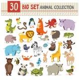 Grote inzameling van leuk wild dier vectorillustratie op whit Stock Foto