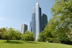 Grote Ivy Lawn in The Field-Museumpark en Chicago skyscrap Royalty-vrije Stock Afbeeldingen
