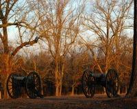Grote kanonnen Royalty-vrije Stock Foto's