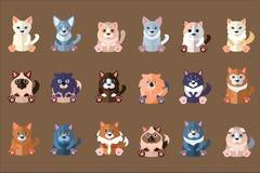 Grote katteninzameling Koe en stier Huishuisdieren Siamese, abyssinian, ragdoll, Noor, sphynx, Schot, Devon stock illustratie
