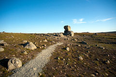 Grote keien op bergplateau Valdresflye, Jotunheimen Stock Fotografie