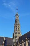 Grote Kerk, Haarlem, Nederland Stock Foto