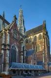 Grote Kerk, Haarlem, Nederland Royalty-vrije Stock Afbeeldingen