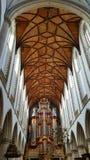Grote Kerk of St Bavokerk en beroemd orgaan Royalty-vrije Stock Foto's