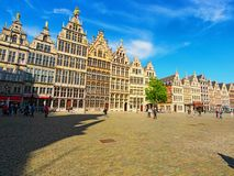Grote Markt Targowy kwadrat z tradycyjną Flamandzką architekturą antwerpia, Które fotografia royalty free
