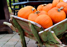 Grote mengeling van Halloween-pompoenen, daling Royalty-vrije Stock Foto's