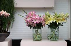 Grote mengeling van verbazende bloemen in vazen Stock Foto's