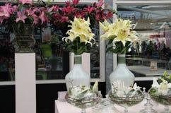 Grote mengeling van verbazende bloemen in vazen Stock Fotografie