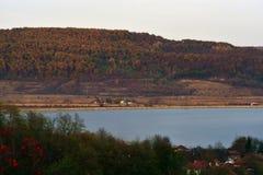 Grote mening met een hoog bos dicht bij het meer Royalty-vrije Stock Foto's