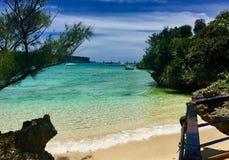Grote mening Onna i strand in Okinawa Stock Foto