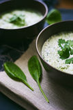 grote mening van de soep met spinazie en knoflook Royalty-vrije Stock Foto