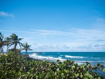 Grote mening van het overzees op een mooie winderige dag bij Condado-strand, San Juan, Puerto Rico royalty-vrije stock foto's
