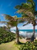 Grote mening van het overzees op een mooie winderige dag bij Condado-strand, San Juan, Puerto Rico royalty-vrije stock foto