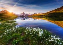 Grote mening van Mt Schreckhorn en Wetterhorn boven Bachalpsee-La stock afbeelding