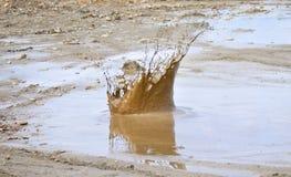 Grote modderplons Stock Afbeelding