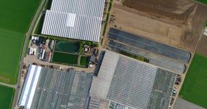 Grote moderne serre, grote landbouw complex, hierboven vliegend over een serre, mening van op de serre stock footage