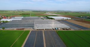 Grote moderne serre, grote landbouw complex, vliegend over een serre die door groene gebieden wordt omringd stock footage