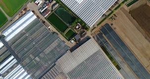Grote moderne serre, grote landbouw complex, vliegend over een serre die door groene gebieden wordt omringd stock videobeelden