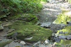 Grote mos behandelde rots in een kreek stock foto