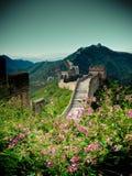 Grote muur China royalty-vrije stock foto's