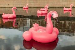 Grote opblaasbare roze flamingo's op de rivier royalty-vrije stock fotografie