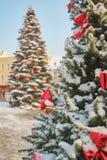 Grote openlucht natuurlijke Kerstboom met rode bogen Royalty-vrije Stock Foto's