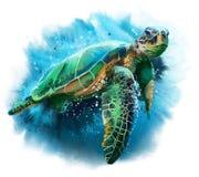 Grote overzeese schildpad royalty-vrije illustratie