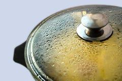 Grote pan met heet voedsel stock fotografie
