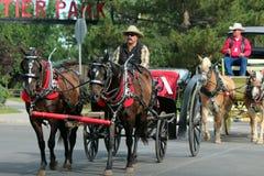 Grote Parade, Cheyenne Frontier Days royalty-vrije stock afbeeldingen
