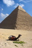 Grote Piramide Cheops Giza Kaïro Oud Egypte Stock Afbeelding
