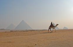 Grote Piramide van Giza, Egypte stock foto's
