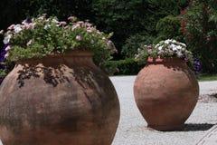 Grote potten van bloemen in exotische tuin stock foto's