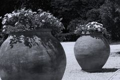 Grote potten van bloemen in exotische tuin stock foto