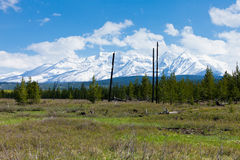 Grote Prairie en Bergketen, Montana Stock Foto's