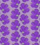 Grote purpere bloem op stevige purple Stock Afbeelding