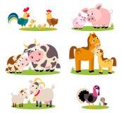 Grote reeks geïsoleerde landbouwbedrijfvogels, dieren Vectorinzamelings grappige dieren, moeders en hun kinderen Royalty-vrije Stock Fotografie