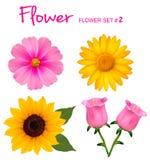 Grote reeks mooie kleurrijke bloemen. stock illustratie