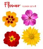 Grote reeks mooie kleurrijke bloemen. royalty-vrije illustratie