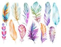 Grote reeks multicolored veren van vogels De tekening van de waterverf vector illustratie