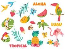 Grote reeks tropische vogels en elementen vector illustratie